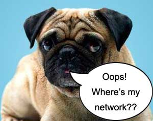 Where is the Hutch Network gone?